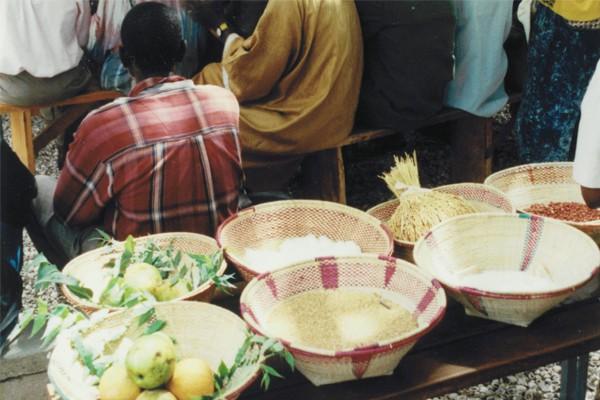 une mission au Sénégal